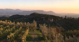 Retreat in Tuscany with Lillian Grajeda from June 1 - 8, 2019