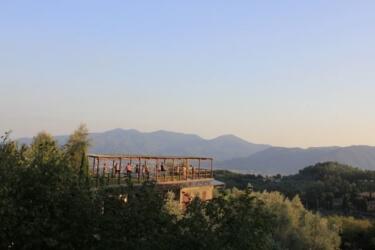 Yoga shala overlooking olive groves and vineyards