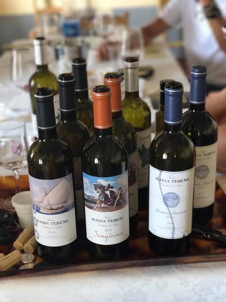 Wine Tasting Excursion. Yoga Retreat Italy