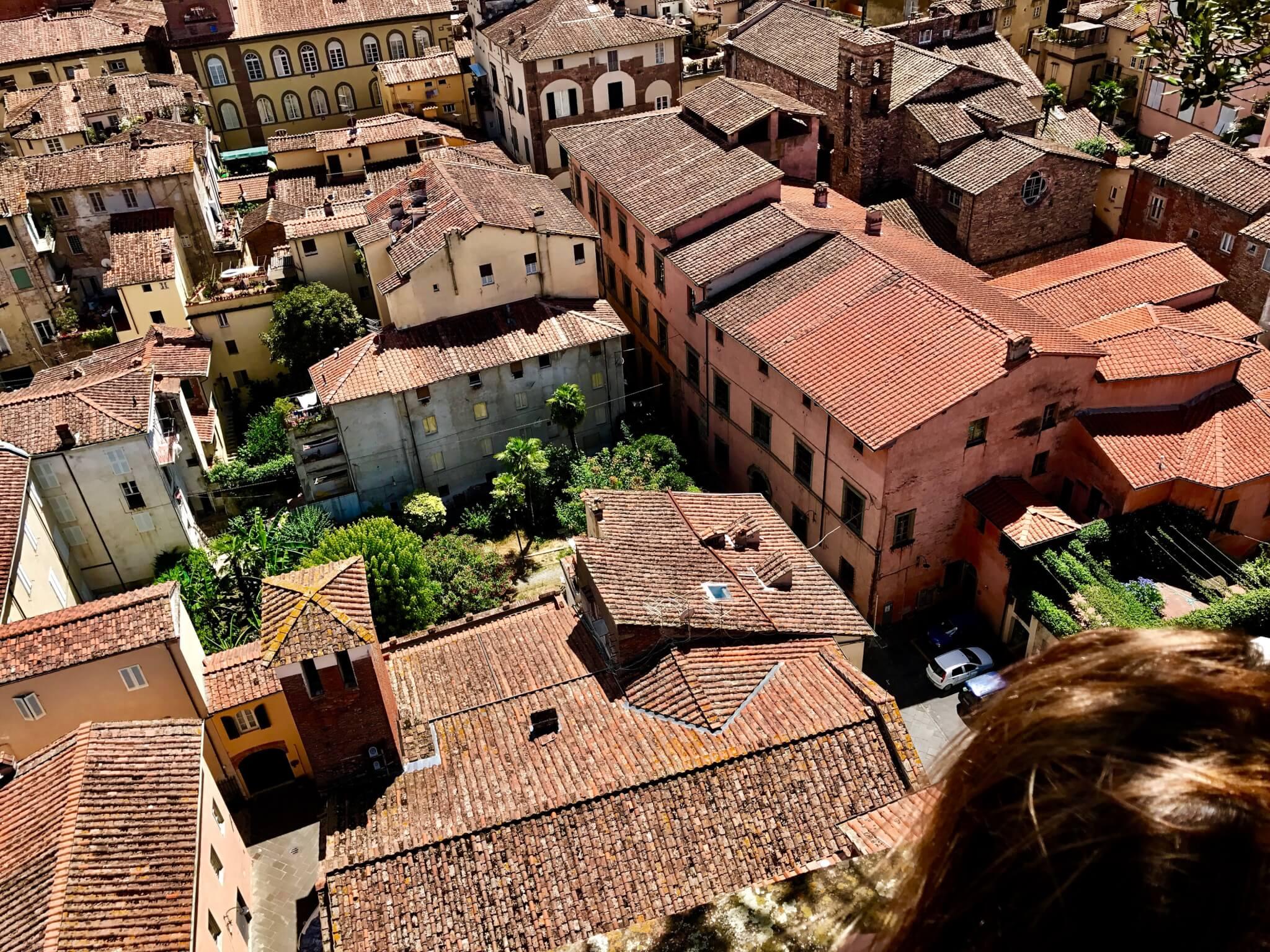 Lucca from Torre Guinigi